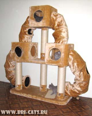 когтеточка-комплекс для кошек